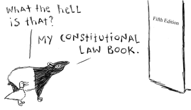 Con_Law_Book.png